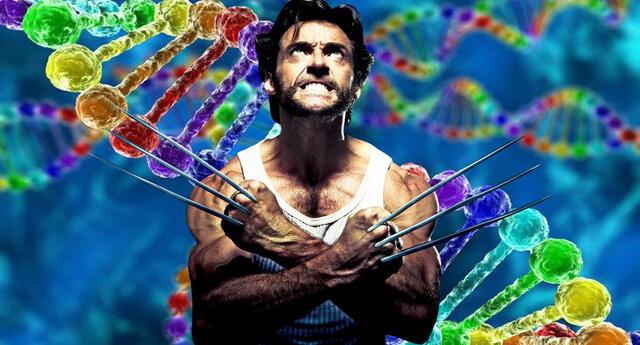 Tecnología basada en la reprogramación celular curaría las heridas 5 veces más rápido.