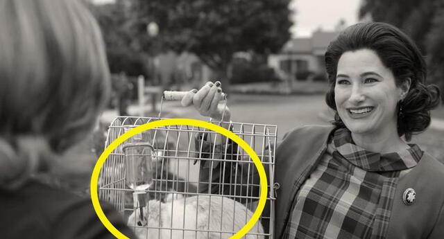 WandaVision: Revelan la escena eliminada del conejito de Agatha Harkness y era de terror