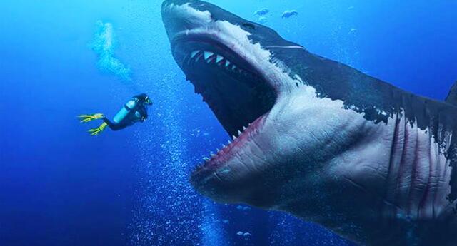 Una teoría asegura que el megalodón aún vive en lo más profundo de los mares.