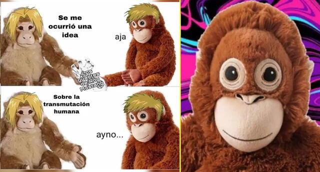 El monito preocupado se llama Joakin y Lupe es la orangután.