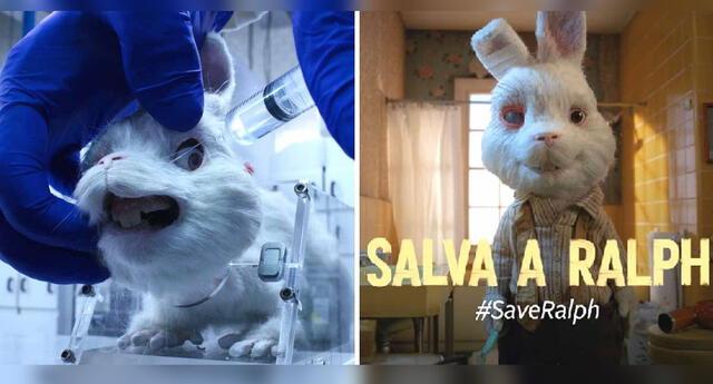'Save Ralph' da potente mensaje sobre las pruebas cosméticas en animales.