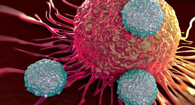 Científicos cada vez se acercan más a la cura contra el cáncer.