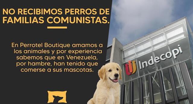Indecopi se pronuncia sobre negocio para mascotas Perrotel, que rechazaba